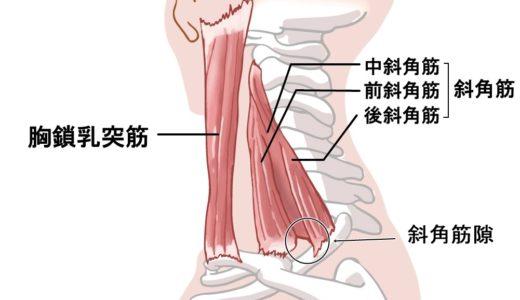 斜角筋症候群 / 腕のだるさ・手のしびれ