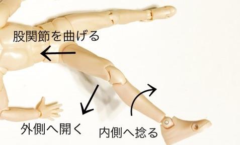 腸脛靭帯作用