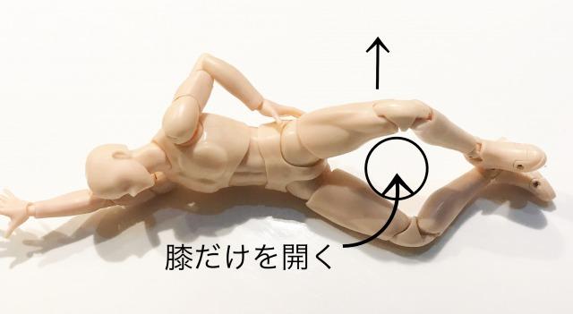 股関節外旋
