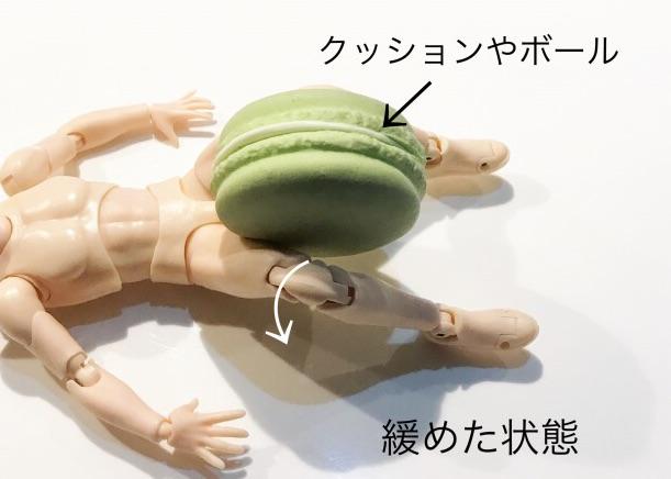 大腿部内転筋