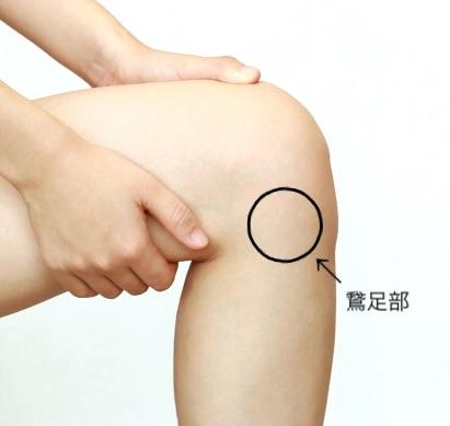 鵞足部の位置