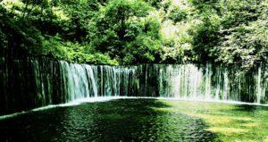 森と水イメージ
